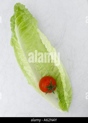 Hojas de lechuga y tomate sobre fondo de metal Imagen De Stock