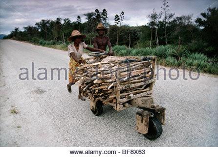 La gente empujando la leña volver a la aldea, Madagascar Imagen De Stock