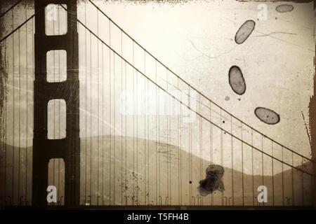 La vendimia, fotografía de un pilar del puente Golden Gate en el Misty lluvia. Imagen De Stock