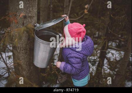 Chica en invierno Gorra asomándose al árbol del bosque bin Imagen De Stock