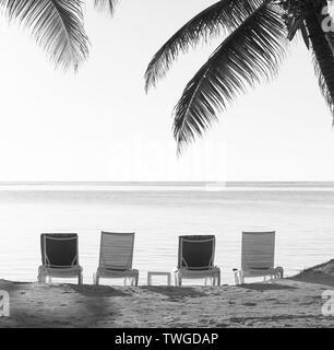 Sillas de playa en la arena con palmeras tropicales como fondo vintage en blanco y negro impresionante Imagen De Stock