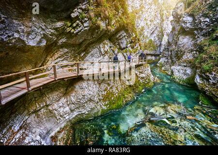 Vintgar Gorge, el Parque Nacional de Triglav, Alpes Julianos, Eslovenia Imagen De Stock