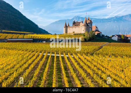 El castillo de Aigle, Aigle, cantón de Vaud, Suiza, Europa Imagen De Stock