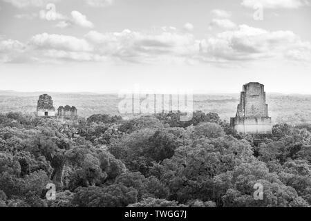 Ruinas mayas de elevarse por encima de la selva en el famoso Parque Nacional de Tikal, Guatemala en blanco y negro impresionante Imagen De Stock