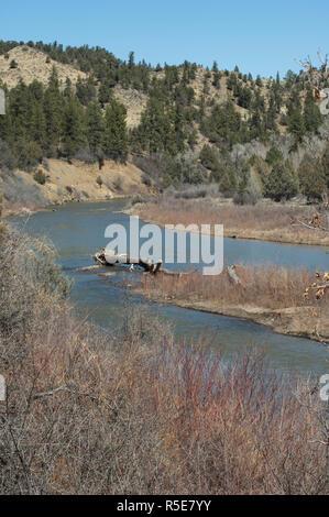 Río Piedra, Southern Ute Reserva, Colorado. Fotografía Digital. Imagen De Stock