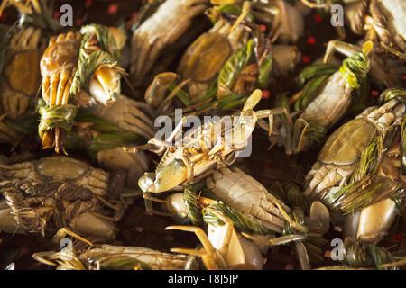 Close-up de cangrejos en un puesto en el mercado, Vietnam Imagen De Stock