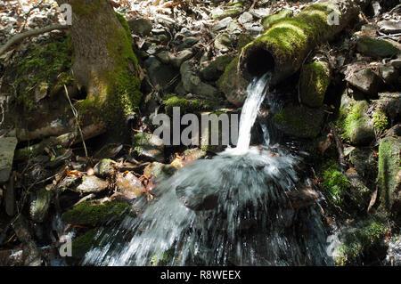 Registro utilizado como una pipa de agua, Qualla Reserva Cherokee, Carolina del Norte. Fotografía Digital. Imagen De Stock