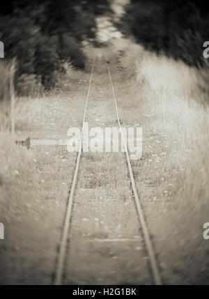 Antiguas vías férreas abandonadas y el bosque. Ajuste de la misteriosa naturaleza de ensueño y con Imagen De Stock