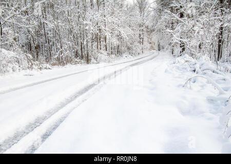 Sinuoso camino en un bosque cubierto por una espesa capa de nieve Imagen De Stock