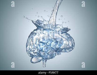 El cerebro está lleno de agua.3D ilustración Imagen De Stock