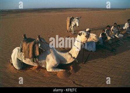 Sudán. el desierto en caravana de Meroe zona Imagen De Stock