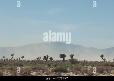 Tormenta de arena en el desierto Mohave, Antelope Valley, California. Fotografía Digital. Imagen De Stock