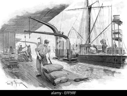 Un barco con sacos de café se está descargando, ca. En 1895, Hamburgo,  Alemania, Europa Fotografía de stock - Alamy