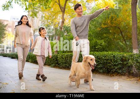 Feliz familia joven caminar a su perro Imagen De Stock
