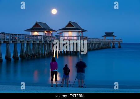 Los fotógrafos capturar la configuración Luna Llena y crepúsculo matutino sobre el muelle de Nápoles, Naples, Florida, EE.UU. Imagen De Stock