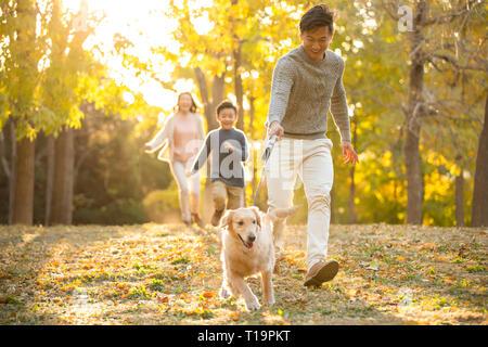 Una joven familia feliz jugando en otoño woods Imagen De Stock