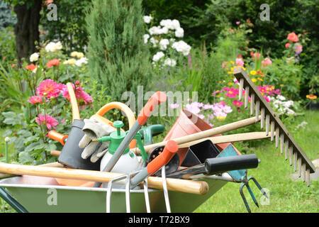 Jardín Imagen De Stock