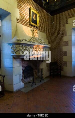 Francia, Indre et Loire, Valle del Loira catalogado como Patrimonio Mundial por la UNESCO, Amboise, el castillo de Amboise, sunbeam en una chimenea Imagen De Stock