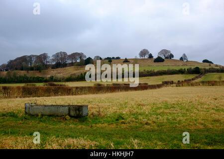 Los campos justo debajo del Old Sarum Fort Hill fuera de Salisbury donde el 'Parlamento tree', una vez redactado Imagen De Stock