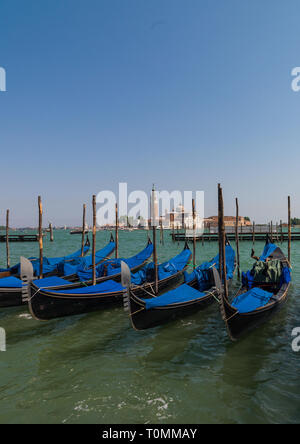 Las góndolas estacionado sobre el gran canal, la región de Veneto, Venecia, Italia Imagen De Stock