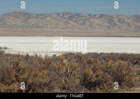 Lago de Soda sobre la Falla de San Andrés, el Monumento Nacional Carrizo Plain, California. Fotografía Digital. Imagen De Stock