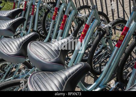 Los asientos de bicicletas. Bicicletas de pie en una fila de fondo. Imagen De Stock