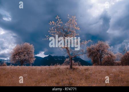 Paisaje otoñal con pradera y nubes de tormenta sobre montañas, Francenigo, Veneto, Italia Imagen De Stock