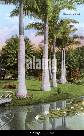 Honolulu, Hawaii, EE.UU. - Parque Moanalua Imagen De Stock