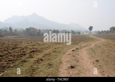 SSK - 1127 Un paisaje con un camino y un árbol y las montañas en el fondo de haze Khajuraho, Madhya Pradesh, India Asia el 18 de diciembre de 2014 Imagen De Stock