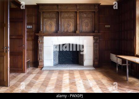 Vista interior de la sala con paneles de madera y chimenea en un castillo abandonado en Bélgica. Imagen De Stock
