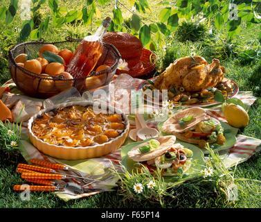 almuerzo tipo picnic Imagen De Stock