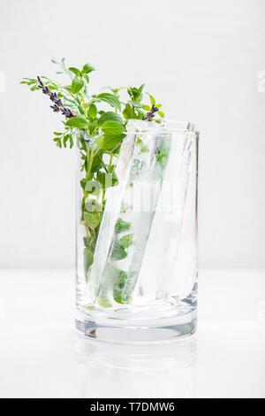 Un vaso grande con cubos de hielo y artesanos hierbas recién cortadas. Imagen De Stock
