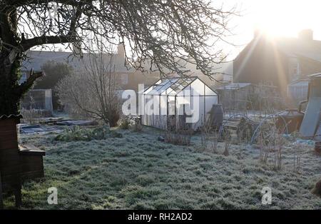 Temprano en la mañana de escarcha en los jardines de adjudicación, Melton Constable, North Norfolk, Inglaterra Imagen De Stock