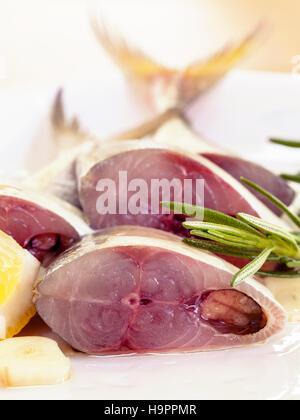 Cortar Mackeral fresca en aceite de oliva. Imagen De Stock