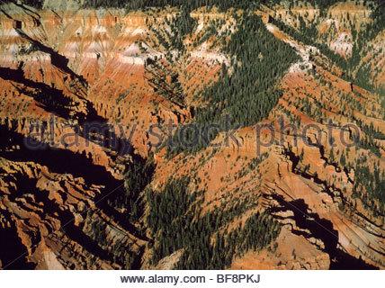El Cedar Breaks National Monument (antena), Utah Imagen De Stock