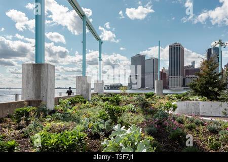 La siembra en el perímetro entre los restos de la antigua bodega. Puente de Brooklyn Park Pier 3, Brooklyn, Estados Unidos. Arquitecto: Michael Van Valk Imagen De Stock