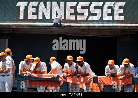 Knoxville, TN, EE.UU.. El 18 de mayo, 2019. Los jugadores de Tennessee ver desde el banquillo durante la séptima entrada de un juego de béisbol universitario de la NCAA en contra de Mississippi en Lindsey Nelson Stadium en Knoxville, TN. Austin McAfee/CSM/Alamy Live News Imagen De Stock