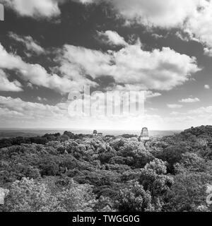 Tikal en Guatemala, una antigua ciudad maya en ruinas rodeado de selva en impresionante blanco y negro Imagen De Stock