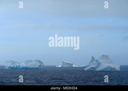 Icebergs flotando en el Antarctic Sound en un día nublado en la Península Antártica, en la Antártida Imagen De Stock