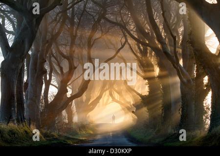 Una silueta figura agrega al humor recubiertos como los rayos de luz del sol levante la niebla en la oscuridad de Imagen De Stock