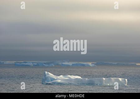 Soleada icebergs flotando en el Antarctic Sound en la Península Antártica, en la Antártida Imagen De Stock