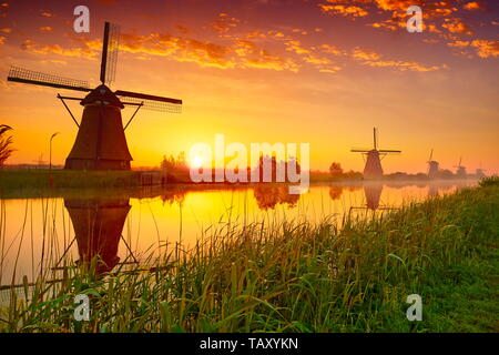 Al amanecer, molinos de Kinderdijk, Holanda Imagen De Stock