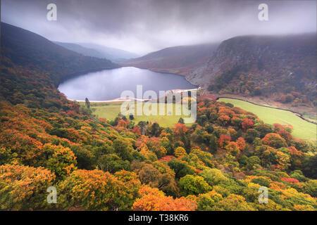 """Una vista de Lough Tay, el llamado """"lago"""" de Guinness, en las montañas de Wicklow, Irlanda. Es visto aquí en un día brumoso todavía un blaze con el otoño. Imagen De Stock"""