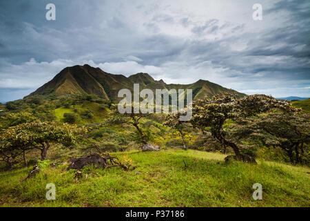 Los hermosos cerros los picachos de Ola montañas, provincia de Coclé, República de Panamá. Imagen De Stock