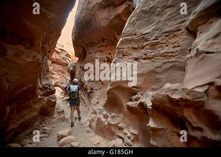 Caminante explorando poco Wild Horse y Bell Canyon Loop, Goblin Valley State Park, San Rafael Swell, Utah Imagen De Stock