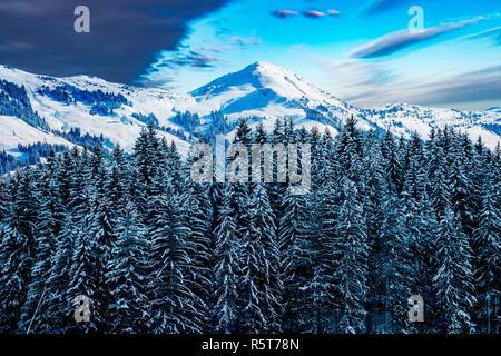 Bosques nevados en frente de los Alpes austríacos. Imagen De Stock