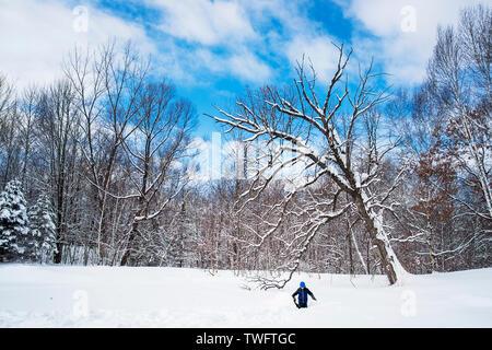 Dos muchachos jugando en la nieve, Estados Unidos Imagen De Stock
