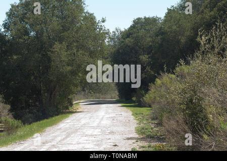 El Camino Real, Camino español entre las misiones, en la purísima misión cerca de Lompoc CA. Fotografía Digital. Imagen De Stock