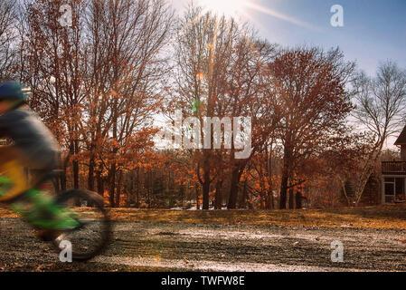 Boy a montar una bicicleta en el parque, Estados Unidos Imagen De Stock
