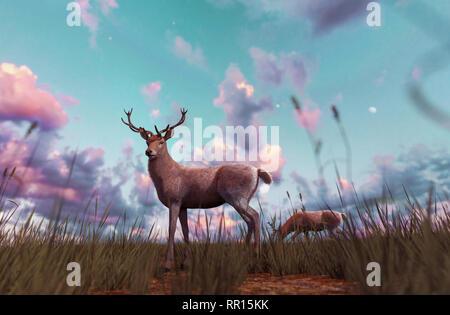 Ciervo en campo de hierba al atardecer o al amanecer,3d ilustración Imagen De Stock